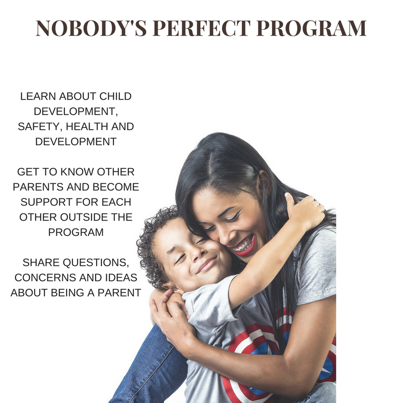 Nobody's Perfect Program